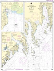 Resurrection Bay Alaska Map.Cape Resurrection To Two Arm Bay Seward Noaa Nautical Chart